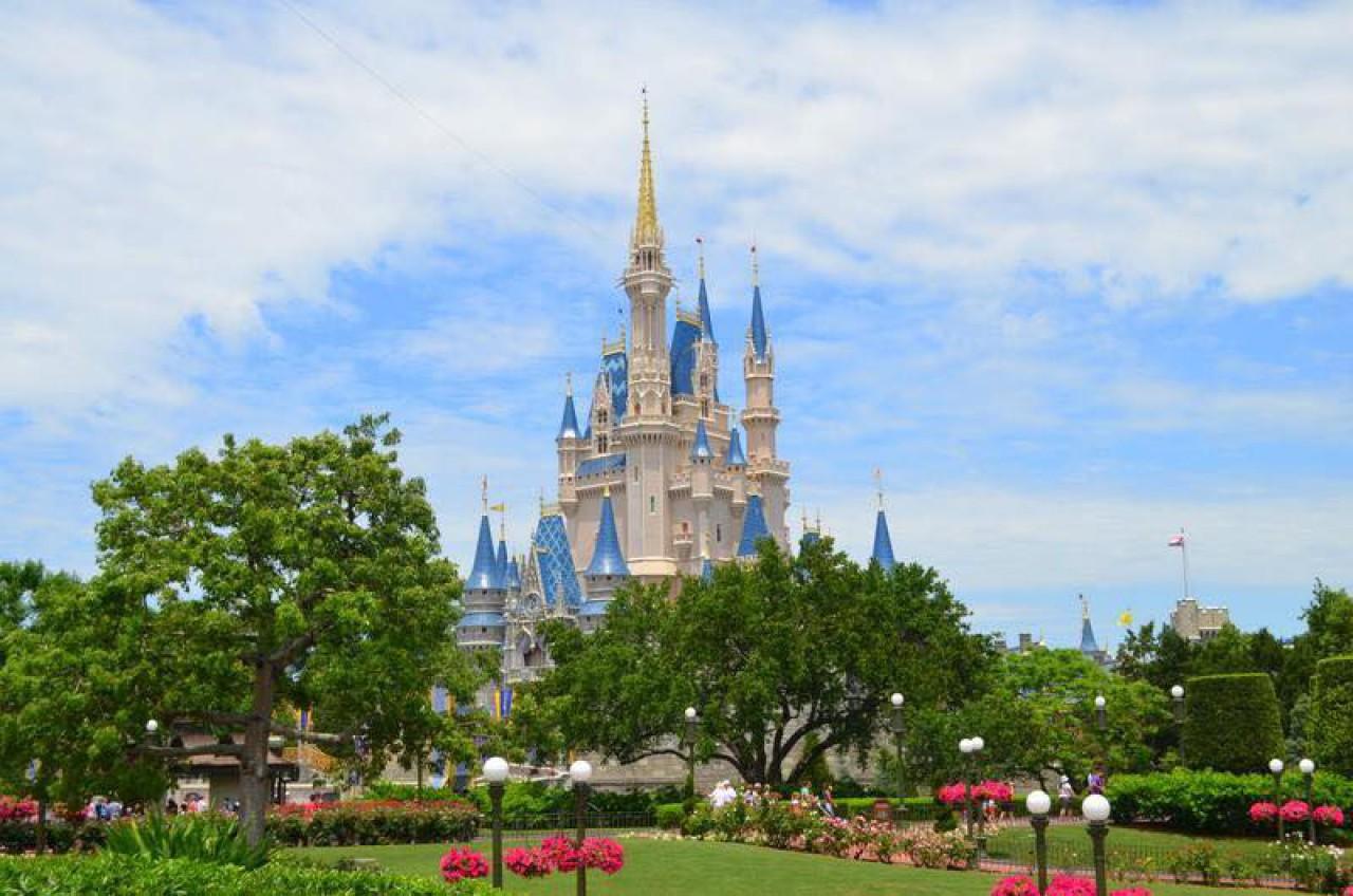 disney world description essay Disney World Essay Examples