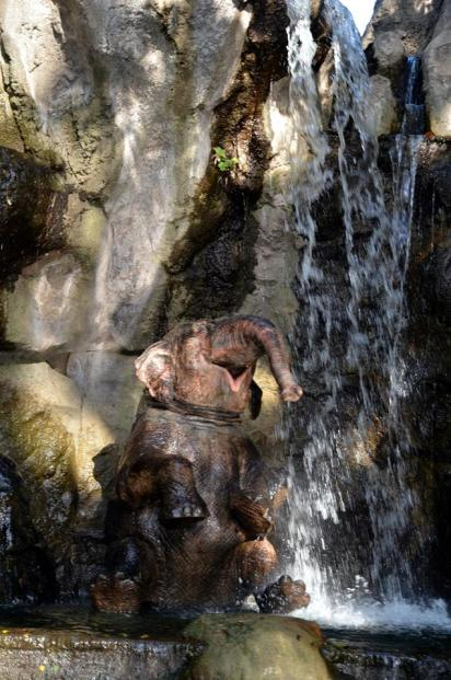 Elephant in Jungle Cruise