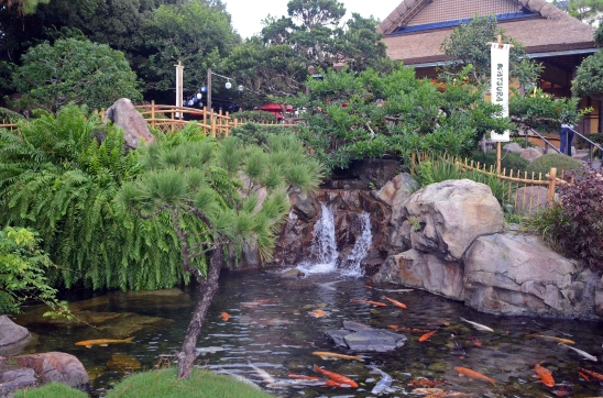 Japanese Garden- Epcot_edited-1