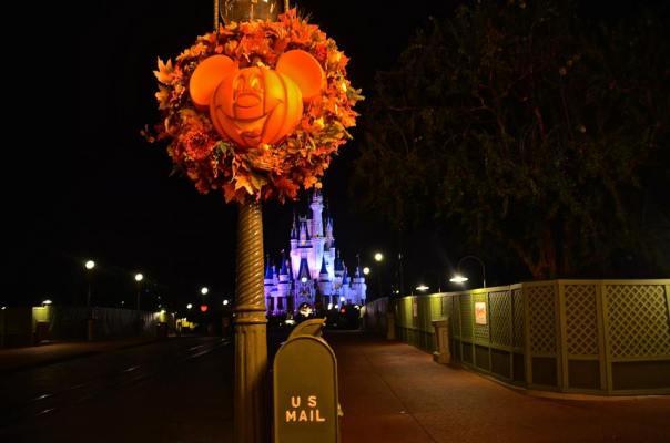 pumpkin mk