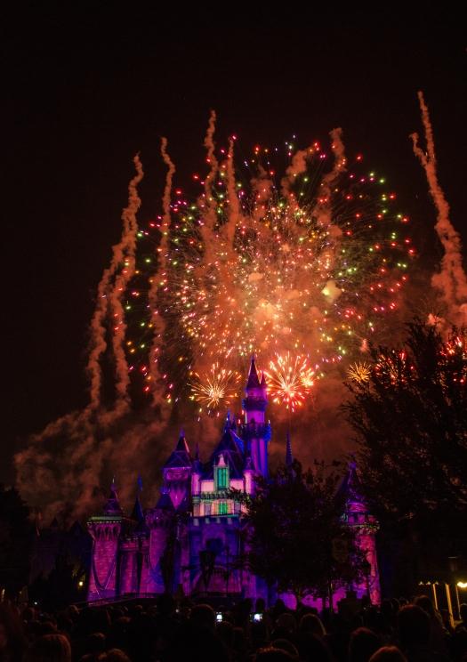 sharp Disneyland Forever