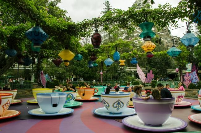 Teacups daytime