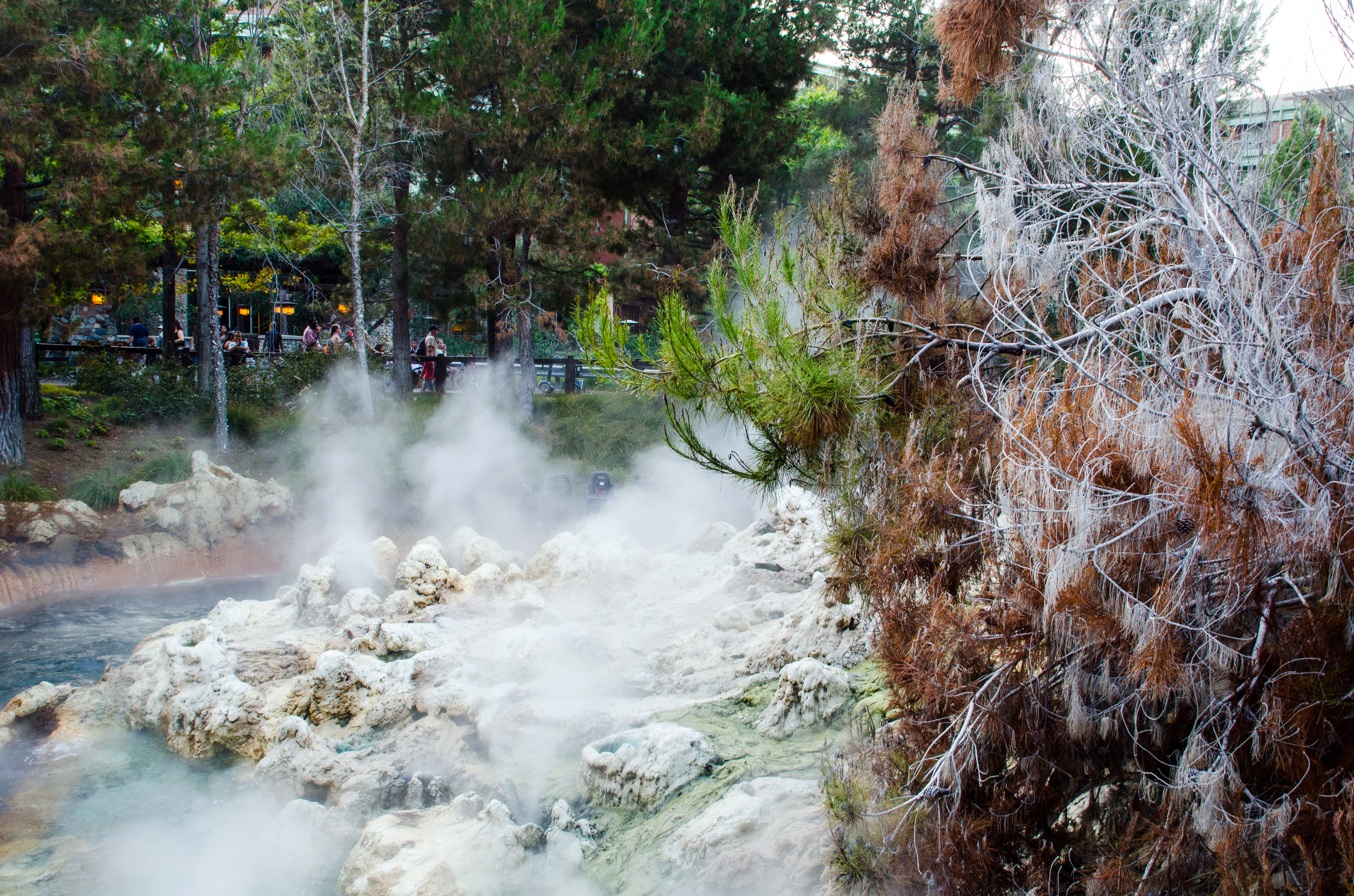 Rollercoaster Added Attractions Fog Grizzly River Run