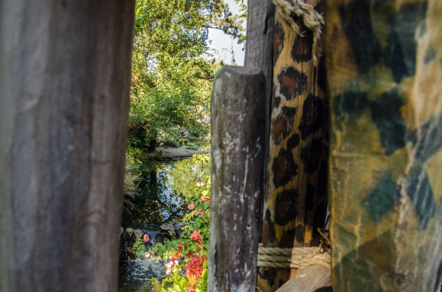 Giraffe fence