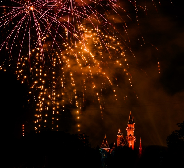 Disneyland Forever cropped pink and yellow