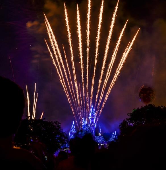 Disneyland Forever sparkly castle