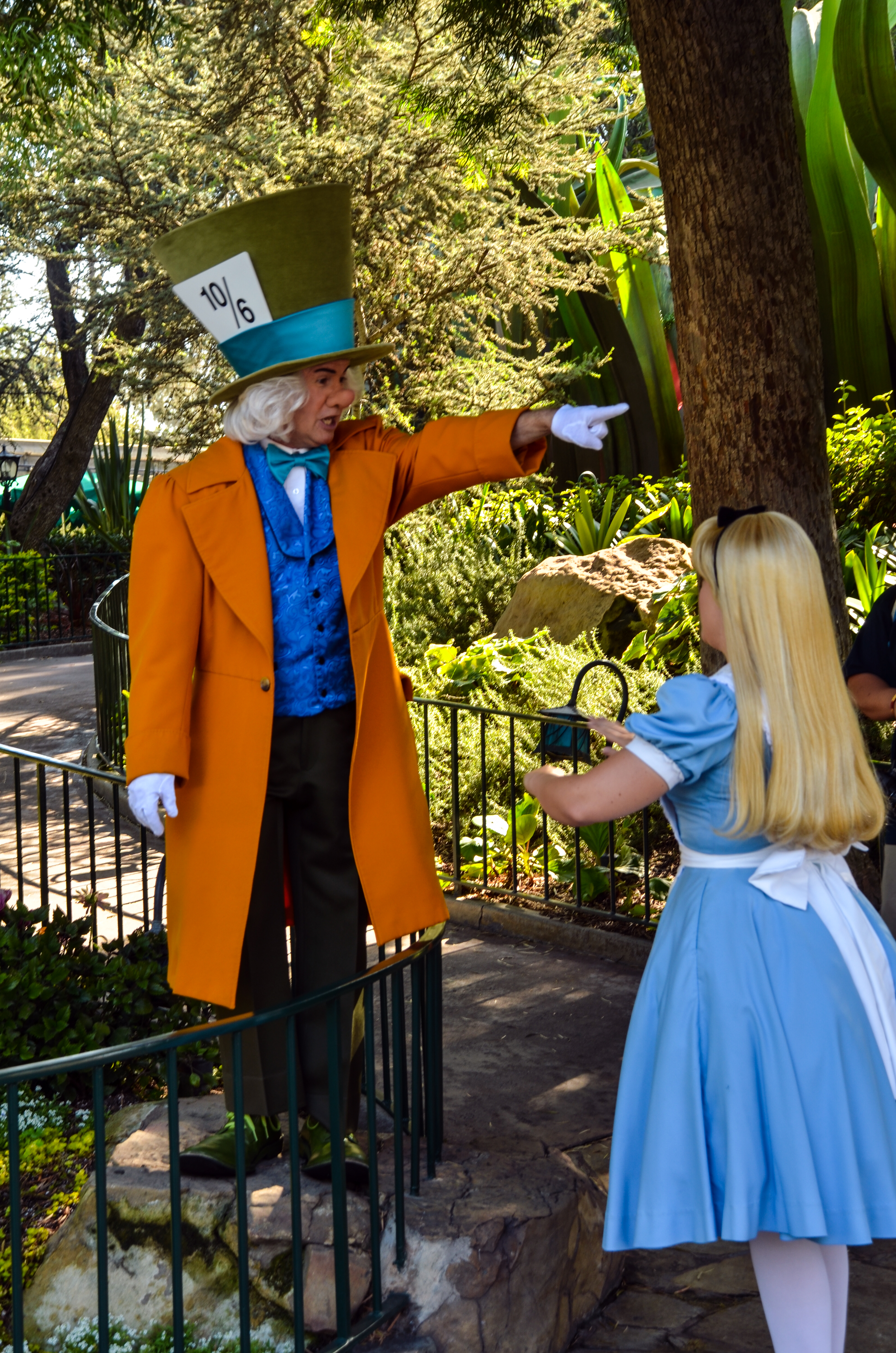 the gallery for gt disneyland alice and mad hatter